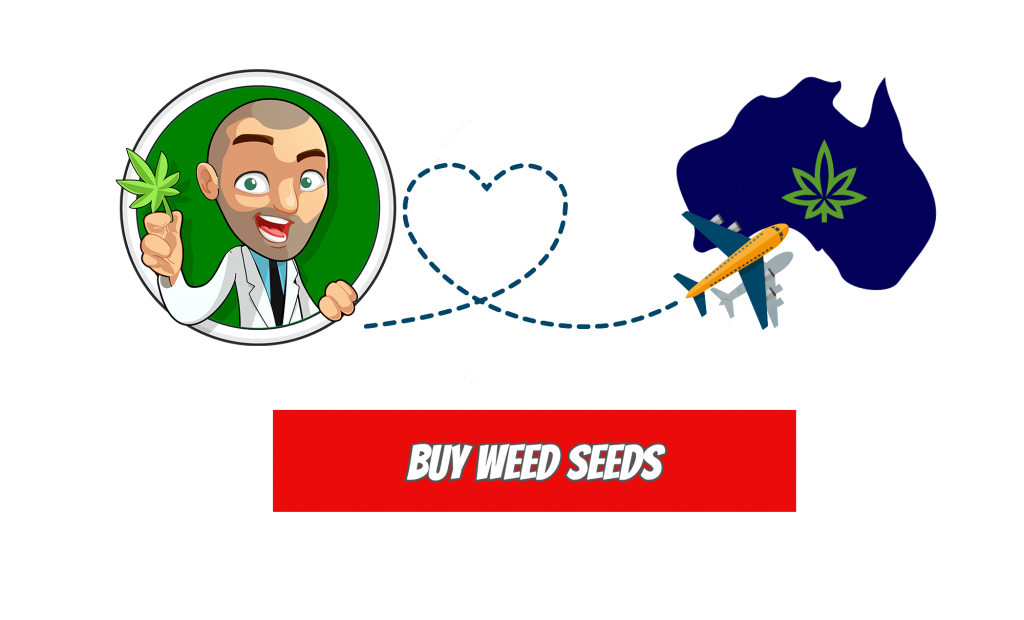 Buy Weed seeds in Australia