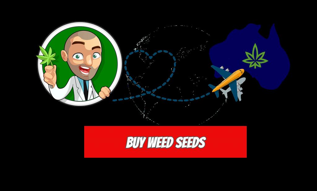 Buy Marijuana Seeds Icon
